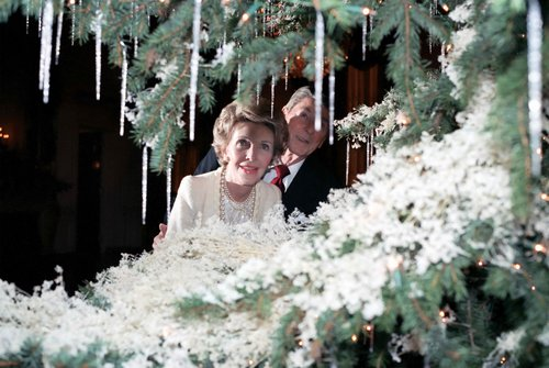 1984.Nancy__and__Ronald__Reagan__looking__between__branches__of__a__t.jpg